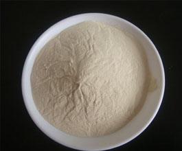 高密度壳聚糖