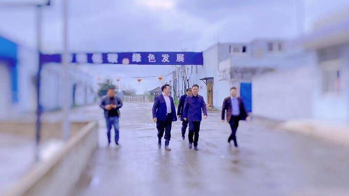 甘垛镇政府王书记率乡镇干部视察鸿信的经营状况与未来发展目标